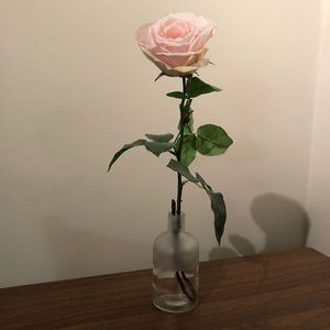 🌵4/$20 | Flowers Vase